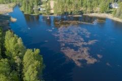 Vesiruttolauttoja_21052018_Sarkasten-lahdella_1